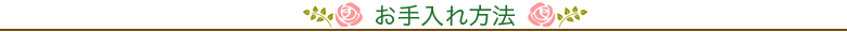 ゴブランペルシャ(ペルシャンレッド)(お手入れ)